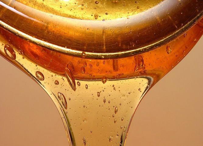 спортивное моторное масло
