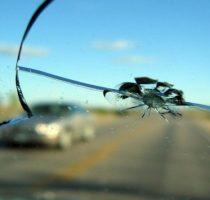Как защитить лобовое стекло автомобиля от сколов? фото